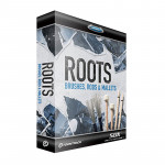 وی اس تی پلاگین تون ترک Toontrack Roots SDX - Brushes Rods and Mallets