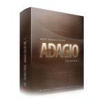 وی اس تی پلاگین  8Dio Adagio Cellos Vol.1