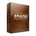 وی اس تی پلاگین  8Dio Adagio Violins Vol.1