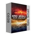 قیمت خرید فروش وی اس تی پلاگین  8Dio Epic Small Percussion Ensemble