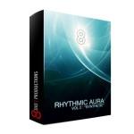 وی اس تی پلاگین  8Dio Rhythmic Aura Vol 2