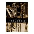 قیمت خرید فروش وی اس تی پلاگین آدیکت Auddict Master Brass Trombones