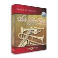 قیمت خرید فروش وی اس تی پلاگین بست سرویس Best Service Chris Hein Horns Complete
