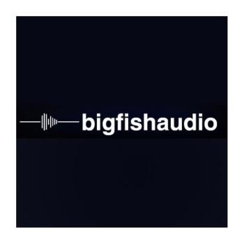 وی اس تی پلاگین بیگ فیش آدیو Big Fish Audio Sample Loop
