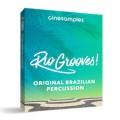 قیمت خرید فروش وی اس تی پلاگین  Cinesamples Rio Grooves