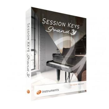 وی اس تی پلاگین ای اینسترومنت E-Instruments Session Keys Grand Y