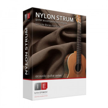وی اس تی پلاگین  Ilya Efimov Production Nylon Strum