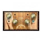 وی اس تی پلاگین  Kontakt Hub Indie Fingers V5 Nylon Edition
