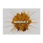 وی اس تی نیتیو اینسترومنتز Native Instruments Massive X