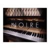 وی اس تی نیتیو اینسترومنتز Native Instruments Noire