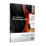 وی اس تی پلاگین نیتیو اینسترومنتز Native Instruments Scarbee Rickenbacker Bass