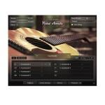 وی اس تی پلاگین نیتیو اینسترومنتز Native Instruments Session Guitarist Picked Acoustic
