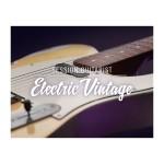 وی اس تی نیتیو اینسترومنتز Native Instruments Session Guitarist - Electric Vintage