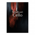 وی اس تی نیتیو اینسترومنتز Native Instruments Stradivari Cello