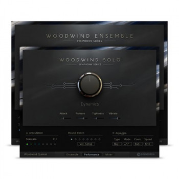 وی اس تی پلاگین نیتیو اینسترومنتز Native Instruments Woodwind Solo