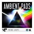 قیمت خرید فروش وی اس تی پلاگین پرایم لوپس Prime Loops Ambient Pads