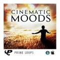 قیمت خرید فروش وی اس تی پلاگین پرایم لوپس Prime Loops Cinematic Moods