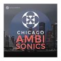 قیمت خرید فروش وی اس تی پلاگین  Pro Sound Effects Library Chicago Ambisonics