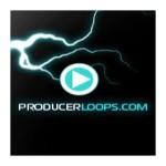 وی اس تی پلاگین پرودوسر لوپس Producer Loops Sample Pack