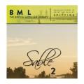 قیمت خرید فروش وی اس تی پلاگین  Spitfire Audio BML Sable Vol 2