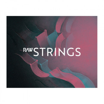 وی اس تی سادن آدیو Sudden Audio RAW Strings