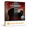 قیمت خرید فروش وی اس تی پلاگین  Orange Tree Samples Evolution Strawberry